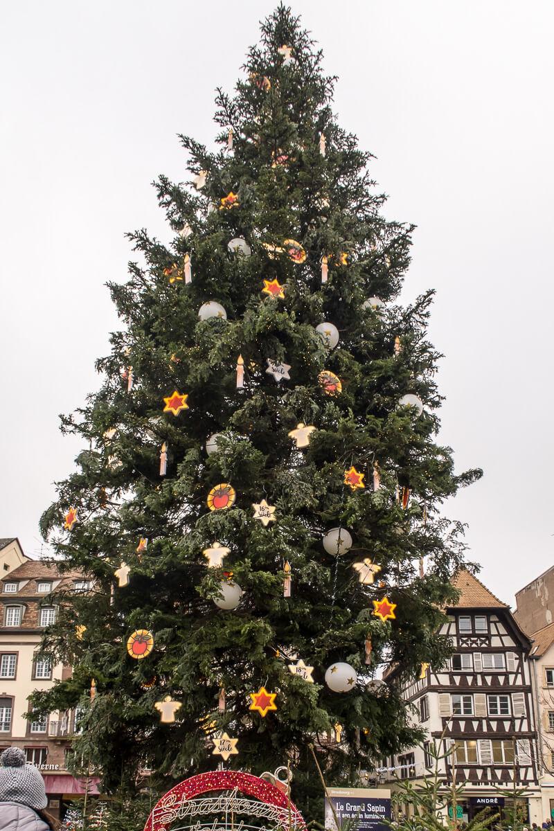 Große Weihnachtstanne am Place Kleber, Strasbourg